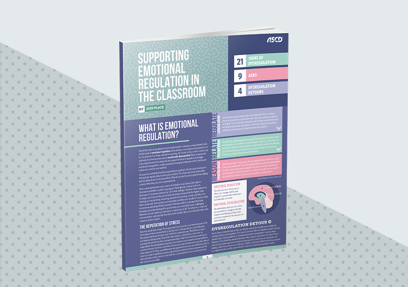 Supporting Emotional Regulation in the Classroom (Quick Reference Guide) - featured image